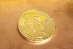Половинное bitcoin с львом Стоковая Фотография