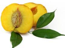 половинный персик s Стоковое фото RF