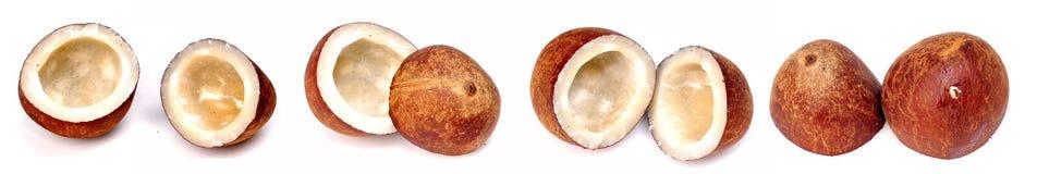 половины кокоса сухие Стоковое Изображение