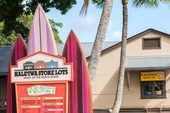 положение Гавайских островов Стоковое Изображение RF