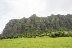 положение Гавайских островов Стоковое Изображение