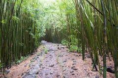 положение Гавайских островов Стоковая Фотография RF