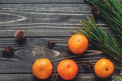 Положение квартиры изображения рождества зеленые ветви ели с tangerine и Стоковые Фото