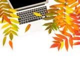 Положение квартиры рабочего места офиса листьев осени компьтер-книжки Стоковые Изображения RF