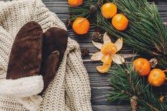 Положение квартиры рождества свитер с перчатками и конусами анисовки и сосны Стоковые Фотографии RF