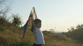 Положение о намерениях эмоции чувства Счастливый мальчик ребенк играя с красочным змеем против предпосылки ландшафта лета видеоматериал