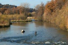 Положение рыболова в реке и улавливая рыбах для рыболовной удочки стоковые изображения