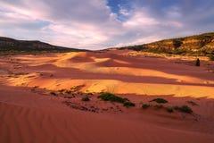 положение США Юта песка пинка парка kanab дюн коралла Стоковые Фотографии RF