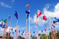 положение флагов Стоковое фото RF