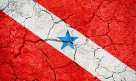 Положение Para, положение Бразилии, флага Стоковые Изображения