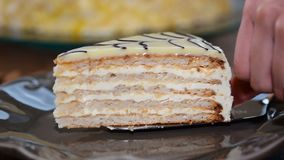 Положенный в плиту десерт торта миндалины Esterhazy части видеоматериал