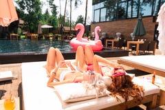 Положительные привлекательные модели получая suntan около бассейна стоковое фото rf