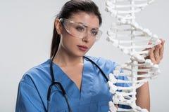 Положительный женский доктор прикладывая структуру дна в обработке Стоковые Изображения RF