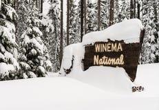 Положительный знак национального леса Winema древесин зимы стоковые изображения