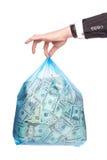 положите деньги в мешки Стоковые Изображения