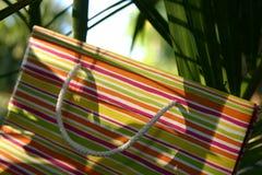 положите лето в мешки подарка Стоковая Фотография