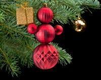 положите снеговик в коробку красного цвета сосенки удерживания подарка ветви золотистый Стоковое Изображение