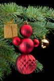 положите снеговик в коробку красного цвета сосенки удерживания подарка ветви золотистый Стоковые Изображения