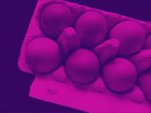 положите яичка в коробку Стоковое Изображение