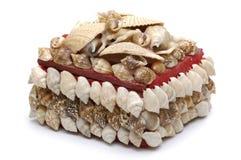 положите seashells в коробку стоковое фото rf