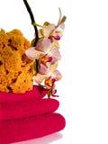 полотенца губки спы орхидеи Стоковые Фото