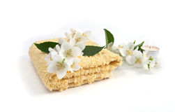 полотенце жасмина Стоковые Фото