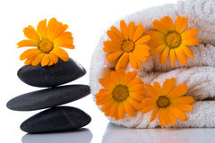 полотенце камня спы цветка Стоковое фото RF