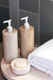 полотенце мыла распределителей Стоковая Фотография RF