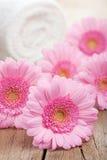 полотенце спы цветков розовое Стоковое Изображение