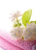 полотенце спы Стоковое Фото