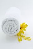 полотенце спы Стоковая Фотография