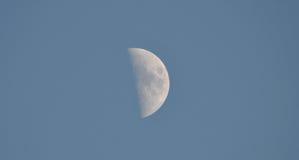 Полумесяц в небе дневного времени Стоковое фото RF