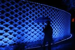 полуночная прогулка Стоковые Изображения RF