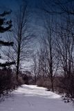 полуночный путь Стоковое Изображение RF