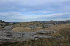 Полуостров банков вне Крайстчёрча, Новой Зеландии Стоковое Фото
