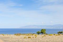 полуостров Кипра akamas Стоковые Фотографии RF
