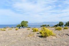 полуостров Кипра akamas Стоковое Изображение RF