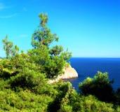 полуостров части ландшафта Крыма пляжа южный стоковые фото