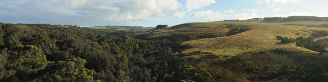 полуостров mornington холмов Стоковое фото RF