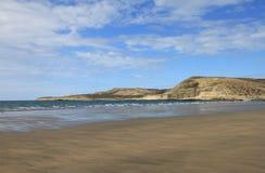 Полуостров Valdes в Аргентине. Среда обитания правых китов. Стоковая Фотография RF