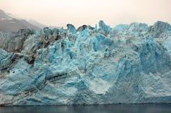 полученный льдед стоковая фотография
