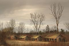 Получившиеся отказ туристские кабины в поле с обнаженными деревьями стоковое фото