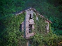 Получившийся отказ деревянный дом покрытый с зеленым плющом стоковое изображение rf
