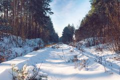 Получившийся отказ железнодорожный проходить снежным лесом зимы стоковые изображения