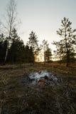 Получившийся отказ располагаясь лагерем костер на заходе солнца в лес стоковая фотография rf