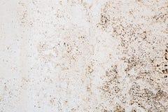 Польза картины текстуры бетонной стены Grunge для multi цели Стоковое Изображение