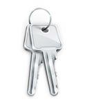 пользует ключом серебр снопа Стоковая Фотография RF