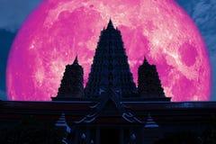 польностью розовая пагода тройки силуэта задней части луны в ночном небе иллюстрация вектора