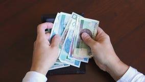 Польский злотый - банкноты денег zl сток-видео