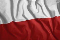 Польский флаг летает в ветер Красочный, национальный флаг Польши Патриотизм, патриотический символ Стоковая Фотография RF